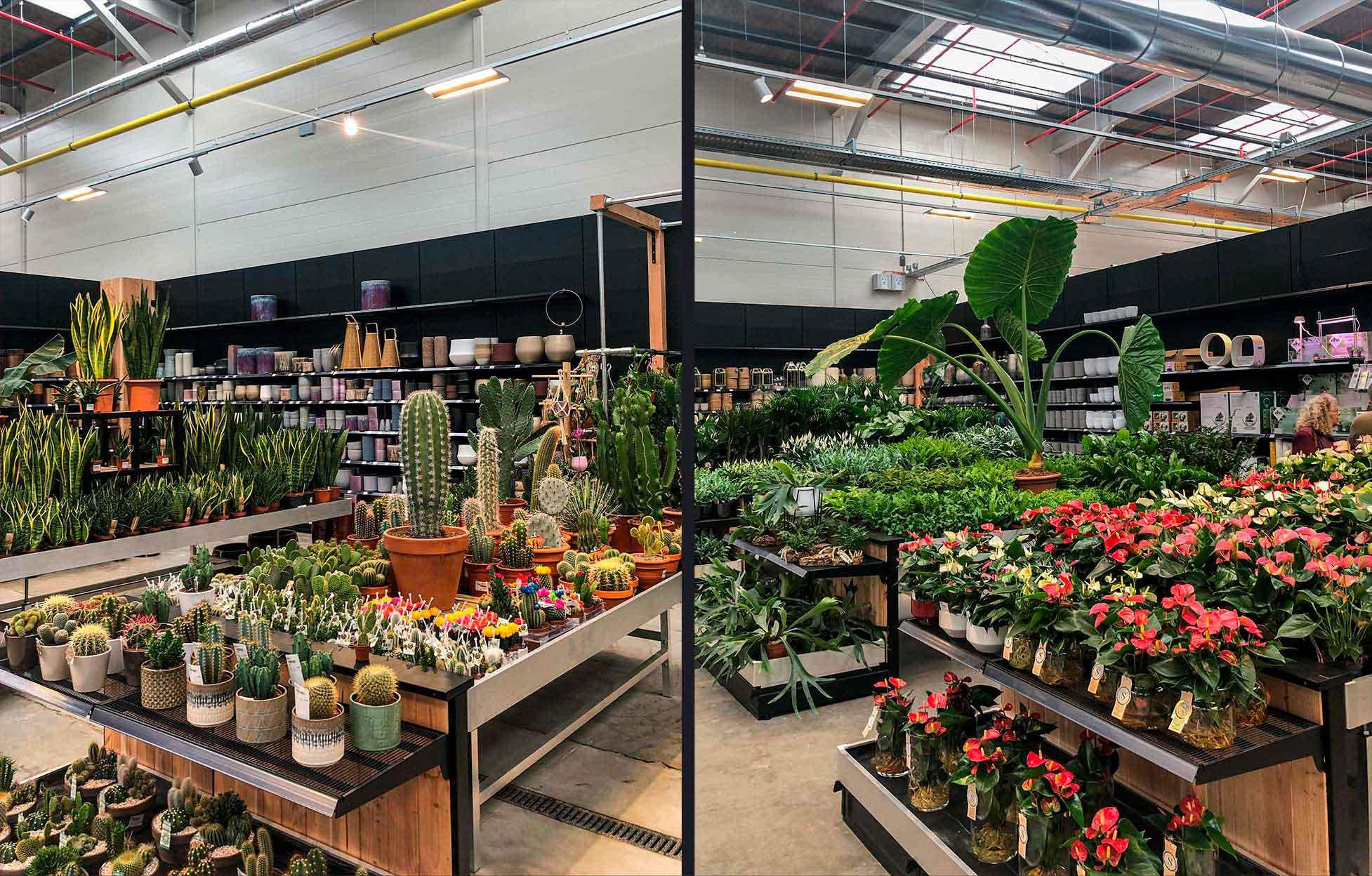 Verlichting voor tuincentrum Oh'Green in Hognoul